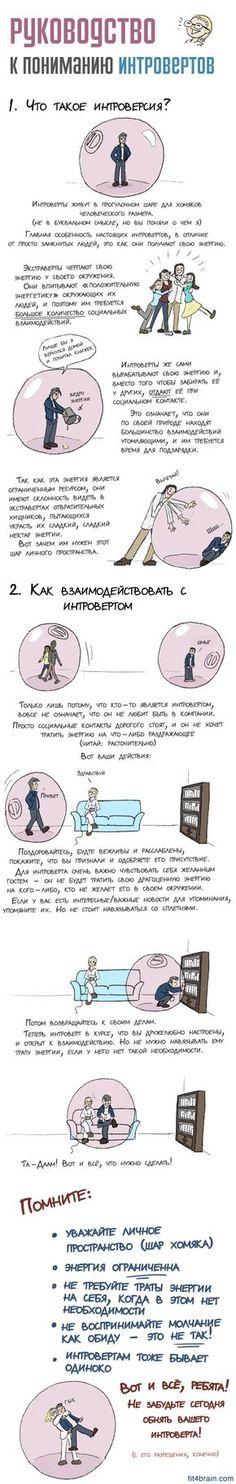 Руководство к пониманию интровертов – Фитнес для мозга