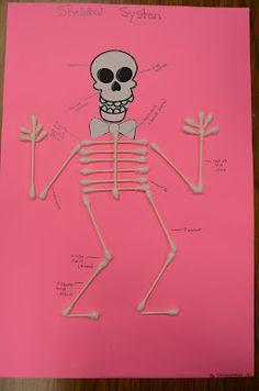 skeleton profiles | anatomy | pinterest | skeletons and anatomy, Skeleton