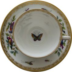 @rubylanecom Dresden Porcelain Tea Cup and Saucer by Richard Klemm - Birds, Bugs, and Butterfly