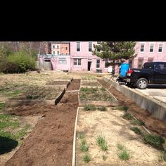 Planted & mulched