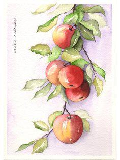 acqurello - ramo di mele