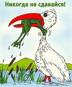 аист и жаба