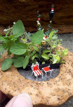 Papercrete pot, petite patio furniture, fantasy flowers, oregano & thyme.