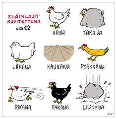 Eläinlajit 42