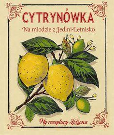 Etykieta Cytrynówka - Citron Alcohol Vintage Label Typography Logo, Typography Design, Lemon Vodka, Alcholic Drinks, Printable Labels, Vintage Labels, Branding, Limes, Packing