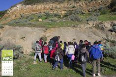Modern Tropical, Sardinia, Grand Canyon, Mount Rushmore, Tourism, Scenery, Coast, Travel, Turismo
