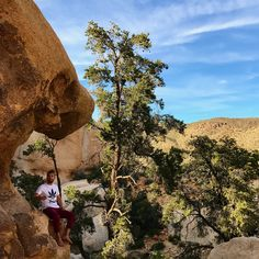 Tuesday at Joshua Tree! From mountain tops to tree tops, get out and explore!