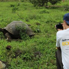The Galapagos Island Hopping trip offers amazingly close encounters with wildlife, exploration of a unique eco-system and plenty of time to chill on pristine white sand beaches.
