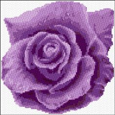 Purple Rose Free Cross Stitch Pattern