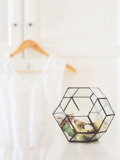 Geometric Glass Planters Combine an Industrial Aesthetic with Lush Nature - My Modern Met