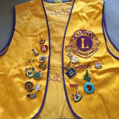 VTG Lions International Club Arcadia California Host Vest Patch + Pin Collection