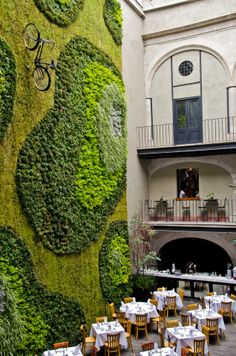 A green wall in Downtown Mexico City - Restaurant   www.DebbieKrug.com