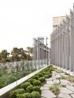 Japanese roof garden at the Melbourne Design School at Melbourne University