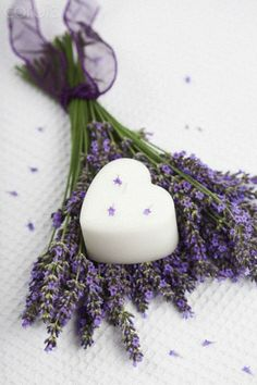 Bunch of lavender flowers (Lavendula) and white heart shaped candle on white ground