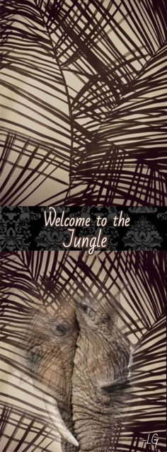 L Jungle Life, Welcome To The Jungle, Fantasy Series, Animal Quotes, Safari, Original Artwork, Art Pieces, Photoshop, Africa