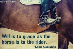 Will is to grace as the horse is to the rider. ~Saint Augustine