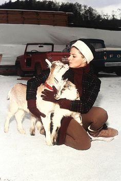 0 ingrid bergman and goats in the snow