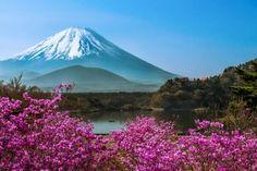 mt fuji japan   Mount Fuji near Tokyo, Japan   Japanesque