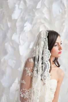 lace veil... very sweet