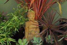 DIG Gardens » garden