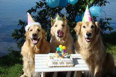 Yummy Birthday Cake :)