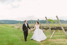 Wedding in a Vineyard   Wisconsin Wedding   Classic Black Tux Wedding