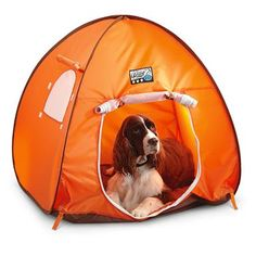 Milliard Outdoor Pet Tent/C&ing Dog Tent - 33x28x44in - //.thepuppy.org/milliard-outdoor-pet-tentc&ing-dog-tent-33x28x44in/ | Pinterest | Dog ...  sc 1 st  Pinterest & Milliard Outdoor Pet Tent/Camping Dog Tent - 33x28x44in - http ...