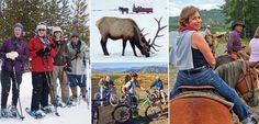Take an American Safari, winter or summer