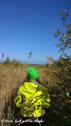 Otanmäen lintuvesiallas - bongarin paratiisi. Grinch