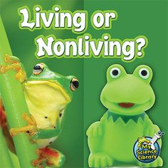 Living or Nonliving? (My Science Library): Early Readers Learn About What Living Things Need As Well As Which Things Are Nonliving In Nature. Science Inquiry, 1st Grade Science, Science Classroom, Science Lessons, Classroom Ideas, Art Lessons, Living And Nonliving, Kindergarten Units, Pre K Activities