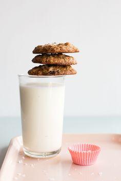 Chocolate-Malted Oatmeal Cookies with Hazelnuts & Sea Salt | hungrygirlporvida.com