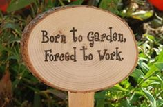 Creative Garden Signs - Dress up your yard. - Born to Garden forced to work.  More garden signs http://thegardeningcook.com/creative-garden-signs/
