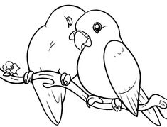 love birds pampered her couple coloring pagesjpg
