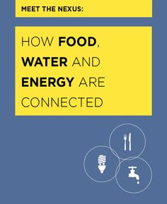"""Nexus Guide: """"Meet the Nexus: How Food, Water and Energy are Connected"""" Food, water & energy are connected. (We know, you know.) So here are 9 tips to get the most bang out of your sustainable-behavior buck!"""