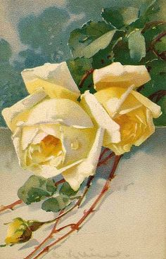 ✿Fragrant Scent Of Roses✿ Catherine Klein                                                                                                                                                                                 Mais