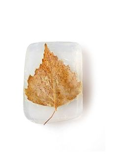 Natural rectangular - leaf