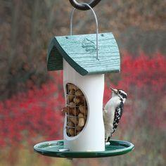 WoodLink WF2 Whole In-Shell Peanut Woodpecker Feeder
