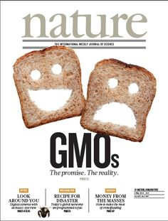 Nature, Volume 497 Number 7447. Genetically modified crops, we were promised, would deliver a second green revolution.  In this special issue, Nature charts the development of GMO technology in the past three decades and looks for the green shoots that might form the basis of the next generation of GMOs. Cover: Kelly Krause/Nature (photo: Nagy-Bagoly Arpad/Shutterstock) Nature Publishing Group