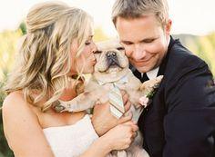 """I LOVE WEDDINGS""   http://www.weddingpartyapp.com/blog/2014/08/29/dogs-at-weddings-35-furry-friends/"