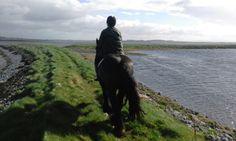 Small Island, Trekking, Horses, Mountains, Website, Travel, Animals, Viajes, Animaux