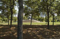 Brown's Island Park