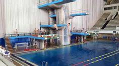 2015 чемпионат России по прыжкам в воду | Moscow, Russia: open diving championship - 29 April 2015