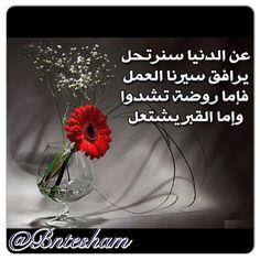 #arabic_quote #world #syria #kuwait #sham #wisdom #instasyria #lebanon #uae #dubai #life #roulanaji #عالم #سوريا #دمشق #كويت #دبي #حكمة #الامارات #مقولة #زمن #دنيا#اقوال_مأثورة #انسان #شرق_اوسط #حياة