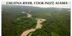The Chuitna is a pristine river home to all 5 species of wild Alaskan salmon. Stop PacRim's plan for a massive coal strip mine! (29851 signatures on petition)