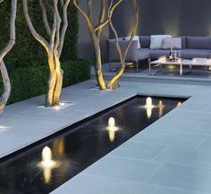Modern water rill and lighting. Love this! Trees and everything...very modern, classy garden.