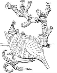 Kids Under 7 Underwater World Coloring Pages