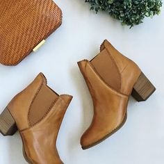 'Sadore' by #djangoandjuliette is one of out favorite styles this season! With a heel height of 6cm it's a winter essential! #evansshoes #shoe #shoes #vsco #vscocam #vscogood #instagram #style #fashion #love #winter #boots #australianfashion #shop #olgaberg #clutch
