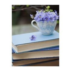 Path of Artemis ❤ liked on Polyvore featuring backgrounds, pictures, photos, flowers and blue