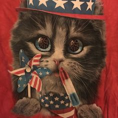 Cute patriotic kitten tshirt Cutest patriotic shirt you'll ever find. Kitten, fireworks, Popsicles and USA. red white and blue Worn once. UO for visibility Urban Outfitters Tops Tees - Short Sleeve