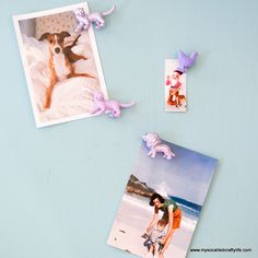 Handmade Gifts 2014- Easy Painted Toy Animal Magnets